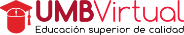 UMBVirtual Logo
